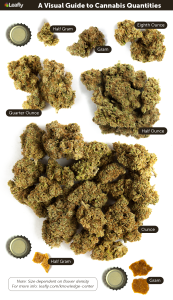 A Visual Guide to Cannabis Quantities